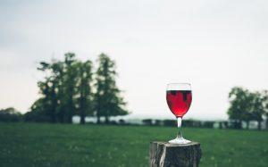 mosela vinos exclusivos asturias en primeur